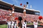 Louisville Cheer Brings Home Numerous National Titles